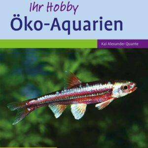 oeko-aquarien-kai-alexander-quante_1
