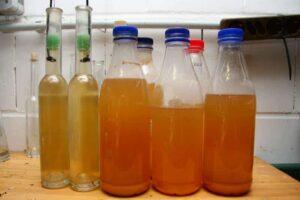essigaelchen flaschen