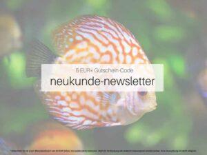 Neukunde Newsletter