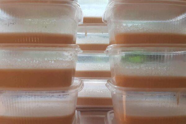 Boxen für die Mikrowürmer
