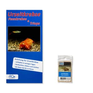 Triops cancriformis UZK-TC
