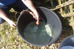 Artemia-Zucht Schritt 4: Wasser auffüllen