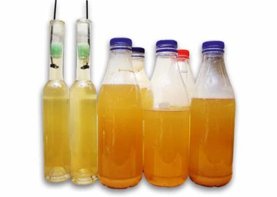 essigaelchen flaschen frei