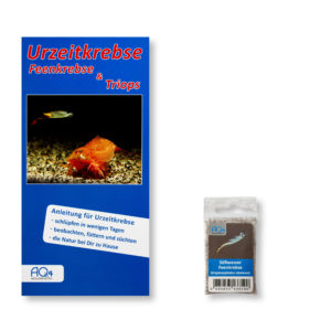 Streptocephalus-siamensis-UZK-SSI