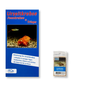 Triops-cancriformis-UZK-TC