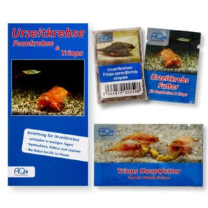 Triops cancriformis simplex UZK-TC-START