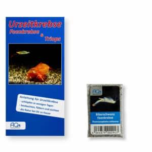 Thamnocephalus platyurus UZK BFK