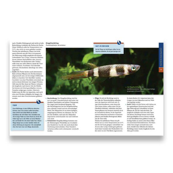 eBook: Kai A. Quante: Ihr Hobby Nano Aquarien